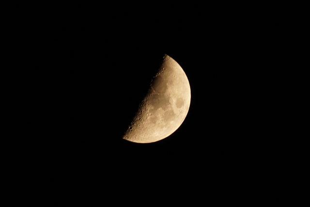 2020.10 上弦の月 (3).jpg