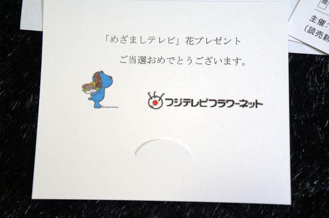 「めざましテレビ」花プレゼント (7).JPG