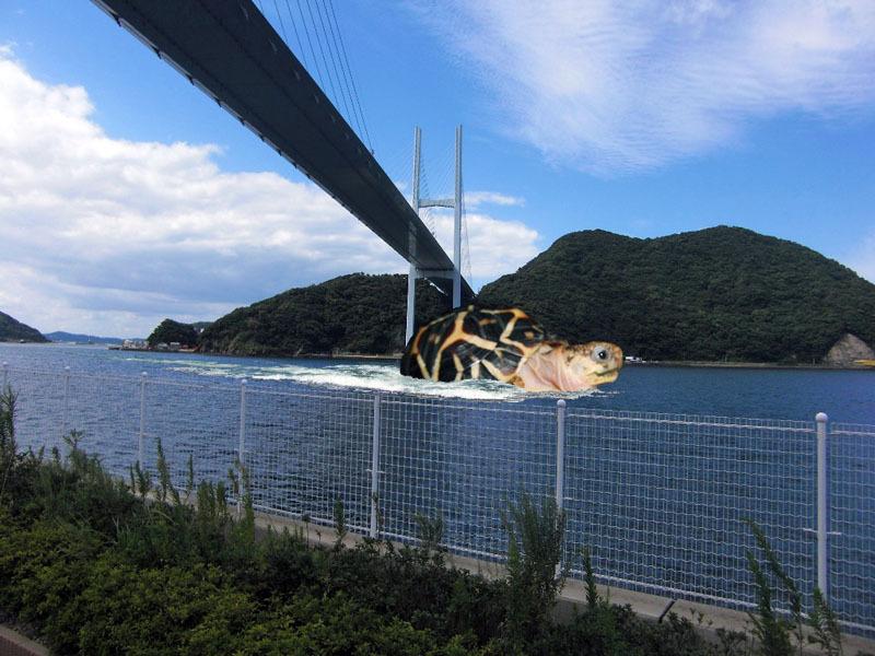 てんてん女神大橋2010-9-25.jpg