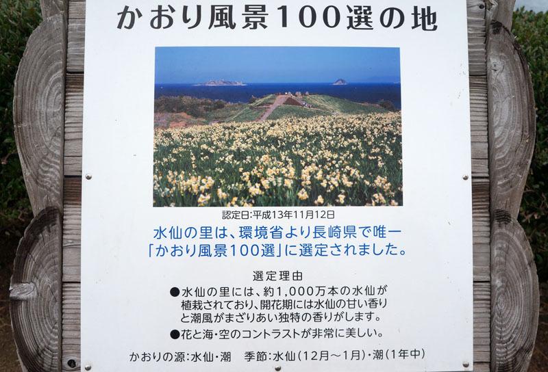 のもざき水仙まつり 8.JPG