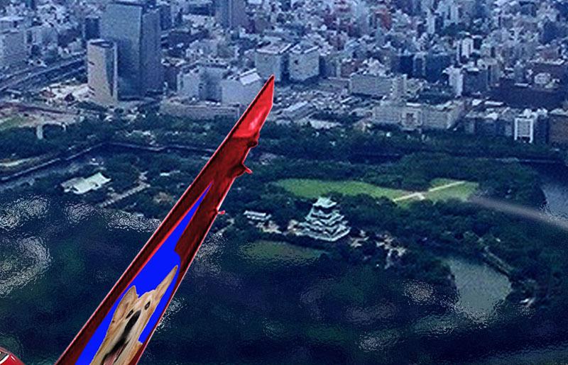 クーちゃんフェラーリで飛ぶ-大阪城.jpg