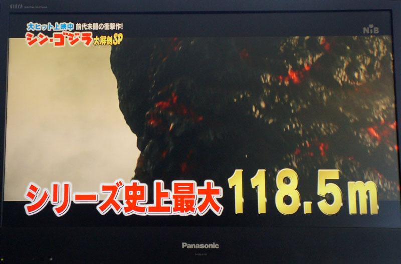 シン・ゴジラ 1.JPG