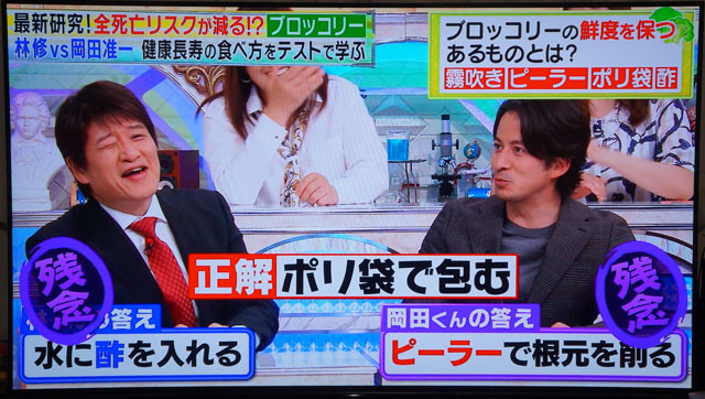 ソニー 55V型 有機EL テレビ ブラビア 画像トラブル 修理 (1).JPG