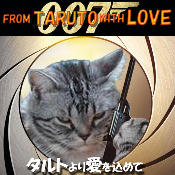 タルちゃん007-1024.jpg