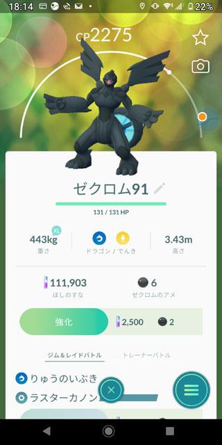 伝説レイド ゼクロム (3).jpg