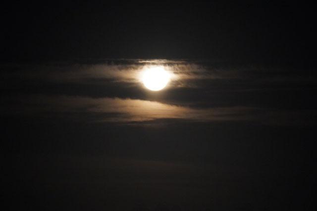 月 (4).JPG