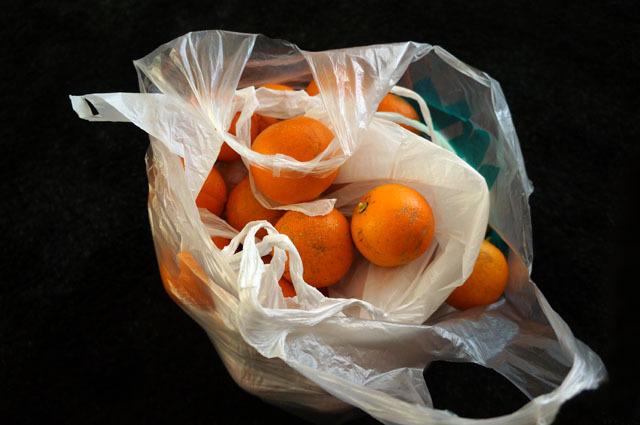 橙 (1).JPG