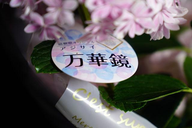 母の日 (9)万華鏡.JPG