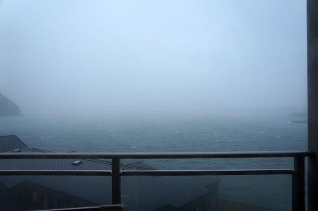 突然の強風と雨 (1).JPG