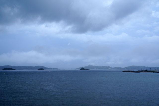 突然の強風と雨 (4).JPG
