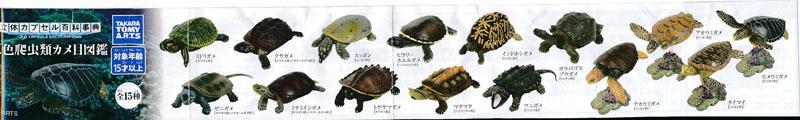 立体カプセル百科事典原色爬虫類カメ目図鑑 (6).jpg