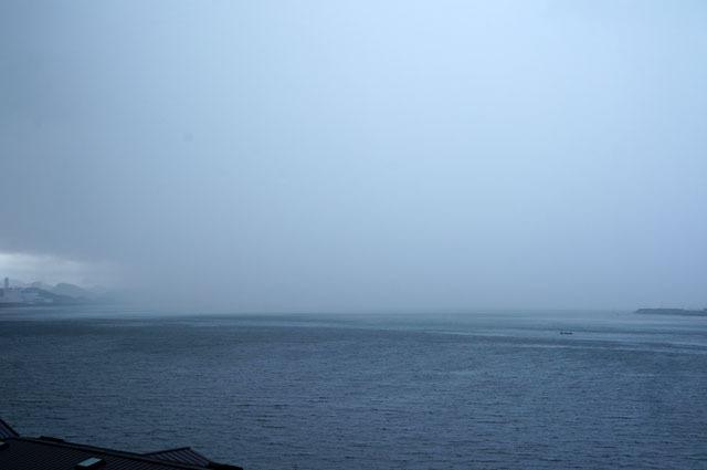 雨が来る (1).JPG