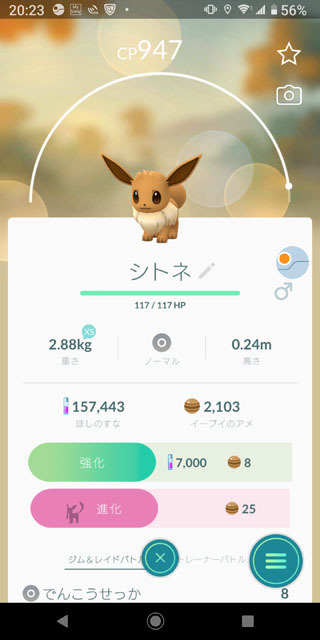 Pokémon GO イーブイ (2).jpg